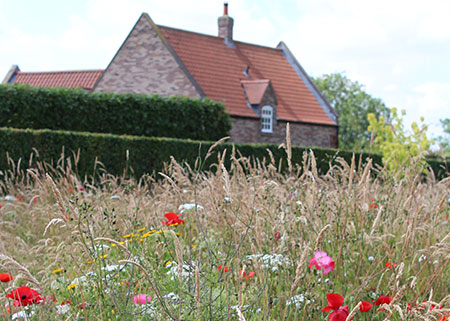 brightwater-gardens-saxby-house-lincolnshire-5