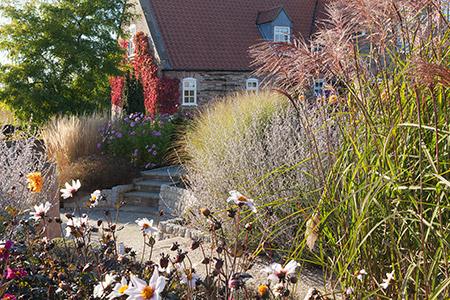 solar-garden-picture